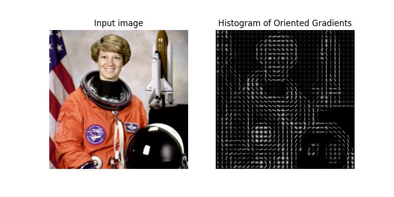 Histogram of Oriented Gradients — skimage v0 16 dev0 docs