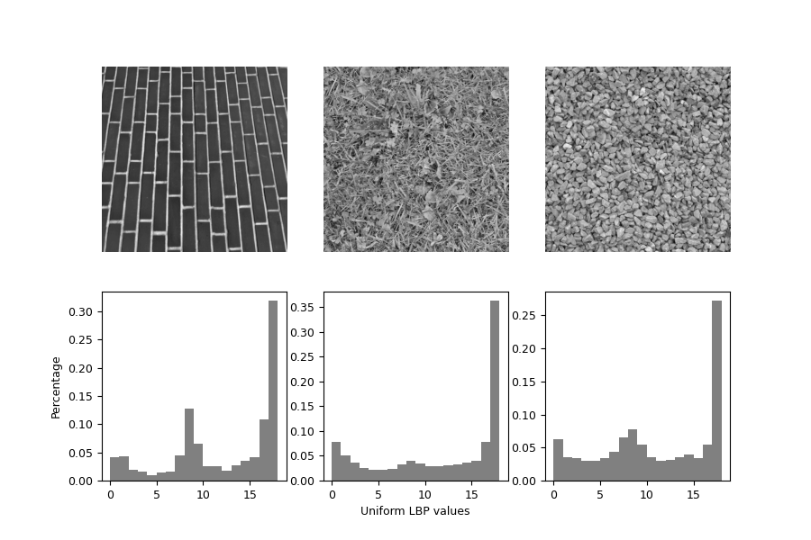 Local Binary Pattern for texture classification — skimage v0 16 dev0