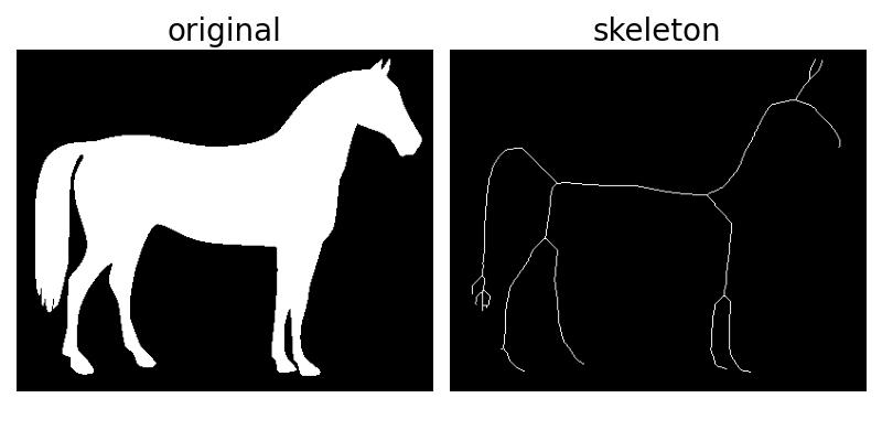 Skeletonize — skimage v0 16 dev0 docs