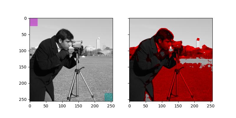 Tinting gray-scale images — skimage v0 16 dev0 docs